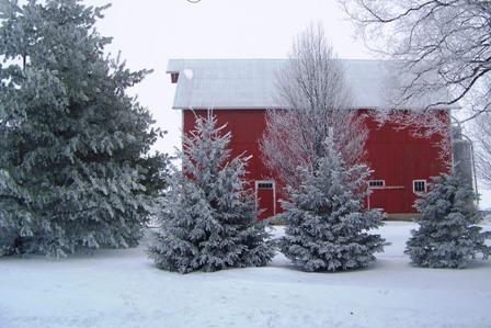 Rural Barn in snowy winter