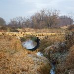 Prairie Oaks Forest Preserve -Haines Creek Bridge