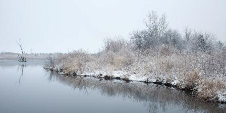 Afton Forest Preserve frozen land meets pond's edge