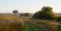 Early September showing path at Merritt Prairie
